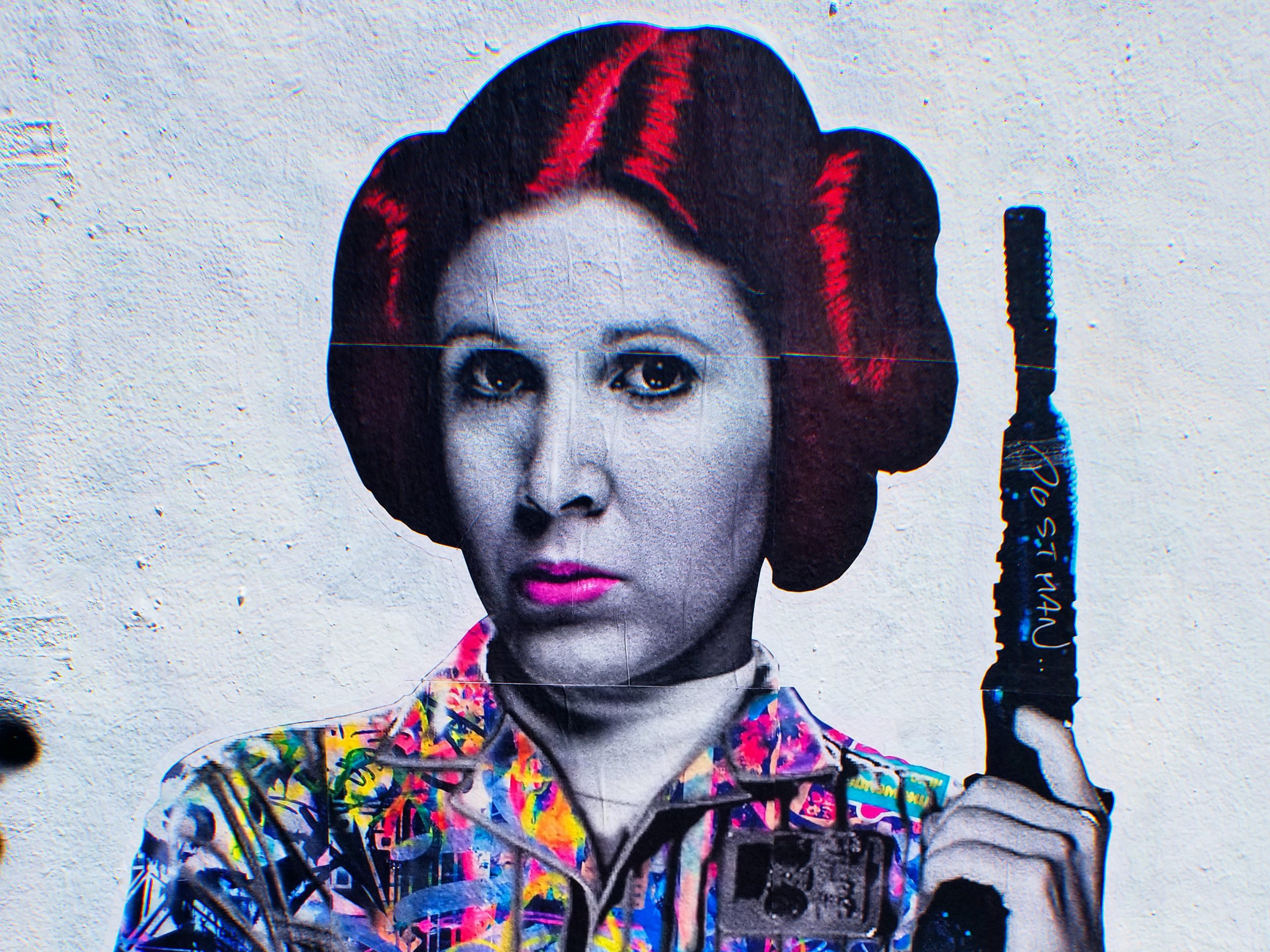 Best Princess Leia Wigs